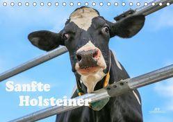 Sanfte Holsteiner (Tischkalender 2019 DIN A5 quer) von JF Führer,  Jana