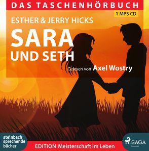 Sarah und Seth von Hicks,  Esther, Hicks,  Jerry, Wostry,  Axel