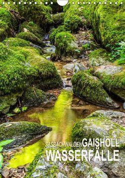 Sasbachwalden Gaishöll-Wasserfälle (Wandkalender 2019 DIN A4 hoch) von Peter,  Ansgar