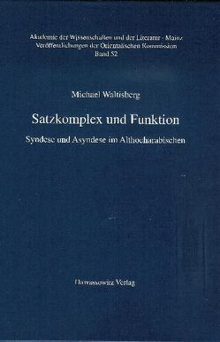 Satzkomplex und Funktion von Waltisberg,  Michael