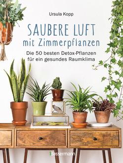 Saubere Luft mit Zimmerpflanzen von Kopp,  Ursula