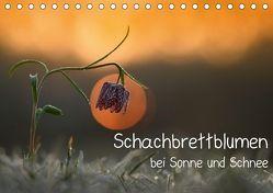 Schachbrettblumen bei Sonne und Schnee (Tischkalender 2018 DIN A5 quer) von Marklein,  Gabi