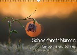 Schachbrettblumen bei Sonne und Schnee (Wandkalender 2018 DIN A3 quer) von Marklein,  Gabi