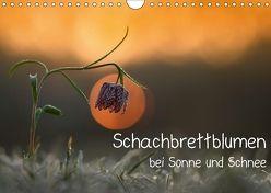 Schachbrettblumen bei Sonne und Schnee (Wandkalender 2018 DIN A4 quer) von Marklein,  Gabi