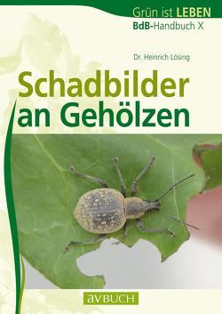 Schadbilder an Gehölzen von Lösing,  Dr. Heinrich