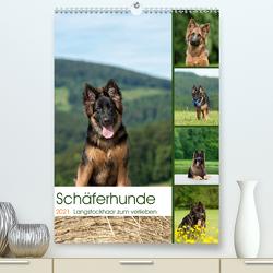 Schäferhunde Langstockhaar zum verlieben (Premium, hochwertiger DIN A2 Wandkalender 2021, Kunstdruck in Hochglanz) von Schiller,  Petra