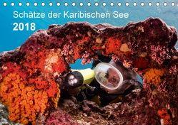 Schätze der Karibischen See (Tischkalender 2018 DIN A5 quer) von - Yvonne & Tilo Kühnast,  naturepics