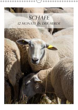 Schafe – 12 Monate in der Herde (Wandkalender 2019 DIN A3 hoch) von und Philipp Kellmann,  Stefanie