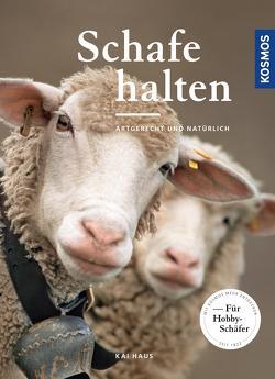 Schafe halten von Haus,  Kai
