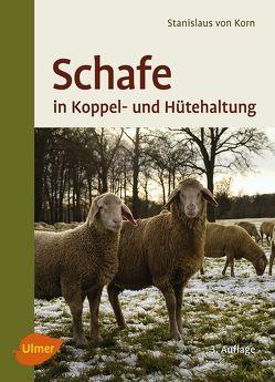Schafe in Koppel- und Hütehaltung von von Korn,  Stanislaus