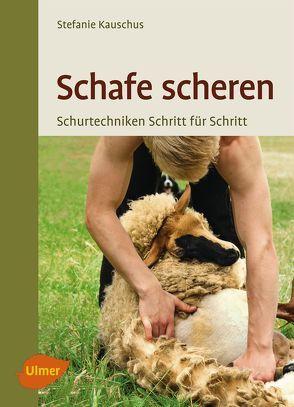Schafe scheren von Kauschus,  Stefanie