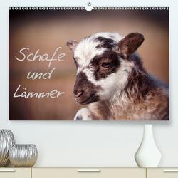 Schafe und Lämmer (Premium, hochwertiger DIN A2 Wandkalender 2020, Kunstdruck in Hochglanz) von Greiling,  Hermann