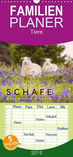 Schafe – Weich und wollig – Familienplaner hoch (Wandkalender 2019 , 21 cm x 45 cm, hoch) von Jackson,  Lain