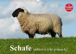 Schafe zählen leicht gemacht! (Wandkalender 2019 DIN A3 quer) von Stanzer,  Elisabeth