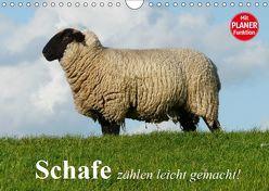 Schafe zählen leicht gemacht! (Wandkalender 2019 DIN A4 quer) von Stanzer,  Elisabeth