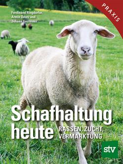 Schafhaltung heute von Deutz,  Armin, Gasteiner,  Johann, Ringdorfer,  Ferdinand