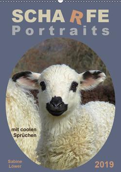 Scharfe Portraits (Wandkalender 2019 DIN A2 hoch) von Löwer,  Sabine