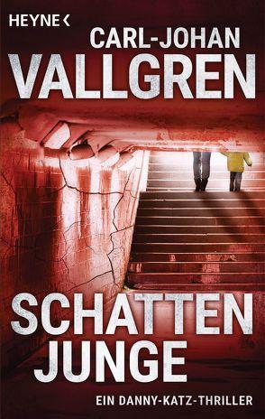Schattenjunge von Hildebrandt,  Christel, Vallgren,  Carl-Johan