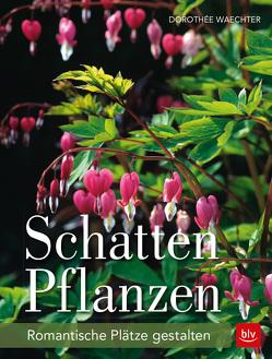 Schattenpflanzen von Waechter,  Dorothée