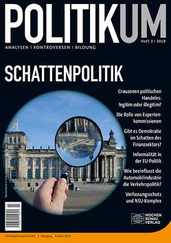 Schattenpolitik von Bieling,  Hans-Jürgen