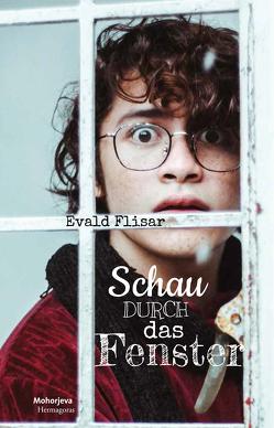 Schau durch das Fenster von Flisar,  Evald