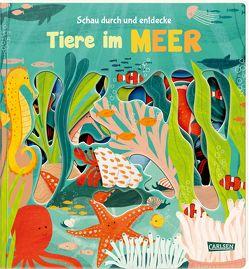 Schau durch und entdecke: Tiere im Meer von Hofmann,  Julia, Tolson,  Hannah