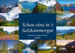 Schau eina in´s Salzkammergut (Wandkalender 2019 DIN A2 quer) von Kramer,  Christa