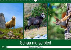 Schau nid so bled (Wandkalender 2019 DIN A3 quer) von Kramer,  Christa