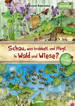Schau, was krabbelt und fliegt in Wald und Wiese? von Bajerowicz,  Katarzyna, Margineanu,  Sandra
