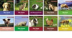 Schauen und Wissen! Haus- und Nutztiere