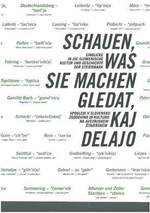 Schauen, was sie machen. Gledat, kaj delajo. von Arlt,  Elisabeth, Artikel-VII-Kulturverein f. Steiermark