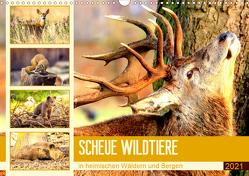 Scheue Wildtiere in heimischen Wäldern und Bergen (Wandkalender 2021 DIN A3 quer) von Hurley,  Rose