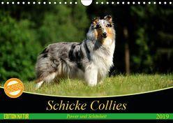 Schicke Collies (Wandkalender 2019 DIN A4 quer) von Janetzek,  Yvonne