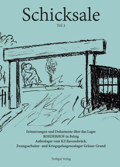 Schicksale Band 3 von Richter,  Inge