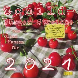 Schild-Bürger-Streiche 2021 ‒ Von Pit Schulz ‒ Broschürenkalender ‒ Format 30 x 30 cm von Schulz,  Peter-Torsten
