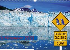 Schildereien (Wandkalender 2020 DIN A3 quer) von Pantke,  Reinhard