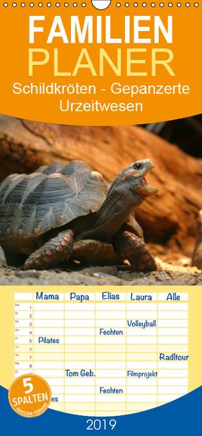 Schildkröten – Gepanzerte Urzeitwesen – Familienplaner hoch (Wandkalender 2019 , 21 cm x 45 cm, hoch) von Mielewczyk,  Barbara