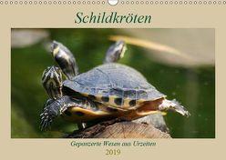 Schildkröten – Gepanzerte Wesen aus Urzeiten (Wandkalender 2019 DIN A3 quer) von Mielewczyk,  Barbara