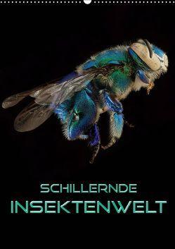 Schillernde Insektenwelt (Wandkalender 2019 DIN A2 hoch) von Bleicher,  Renate