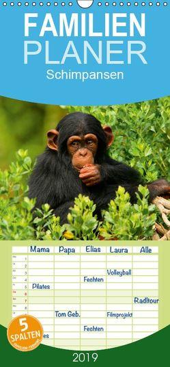 Schimpansen – Familienplaner hoch (Wandkalender 2019 , 21 cm x 45 cm, hoch) von Stanzer,  Elisabeth
