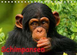 Schimpansen (Tischkalender 2018 DIN A5 quer) von Stanzer,  Elisabeth