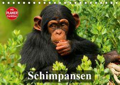 Schimpansen (Tischkalender 2019 DIN A5 quer) von Stanzer,  Elisabeth
