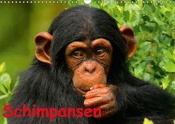 Schimpansen (Wandkalender 2018 DIN A3 quer) von Stanzer,  Elisabeth