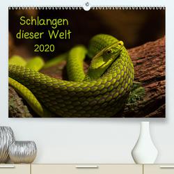 Schlangen dieser WeltAT-Version (Premium, hochwertiger DIN A2 Wandkalender 2020, Kunstdruck in Hochglanz) von GuidoTipka/GUTI-Fotos