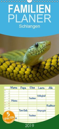 Schlangen – Familienplaner hoch (Wandkalender 2019 , 21 cm x 45 cm, hoch) von Stanzer,  Elisabeth