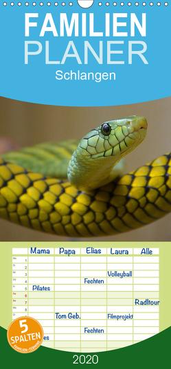 Schlangen – Familienplaner hoch (Wandkalender 2020 , 21 cm x 45 cm, hoch) von Stanzer,  Elisabeth