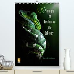 Schlangen im Lichtfenster des Dschungels (Premium, hochwertiger DIN A2 Wandkalender 2021, Kunstdruck in Hochglanz) von Schmidbauer,  Heinz