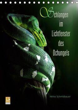 Schlangen im Lichtfenster des Dschungels (Tischkalender 2019 DIN A5 hoch) von Schmidbauer,  Heinz