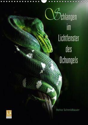 Schlangen im Lichtfenster des Dschungels (Wandkalender 2018 DIN A3 hoch) von Schmidbauer,  Heinz