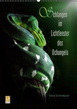 Schlangen im Lichtfenster des Dschungels (Wandkalender 2019 DIN A2 hoch) von Schmidbauer,  Heinz